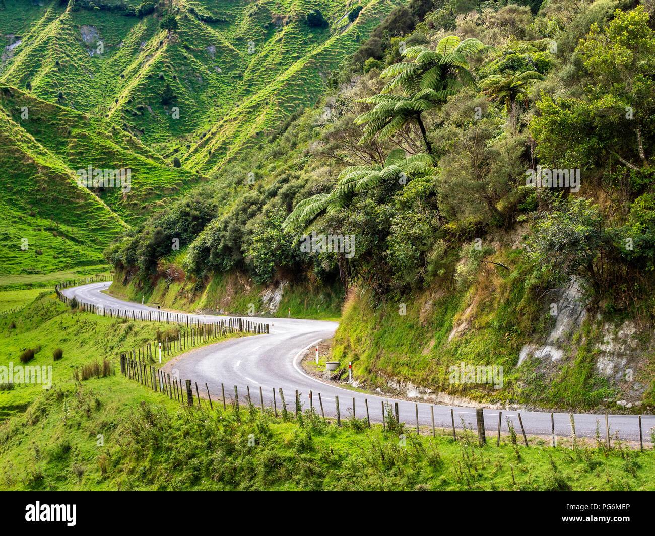 New Zealand, North Island, Manawatu-Wanganui Region, Forgotten World Highway - Stock Image