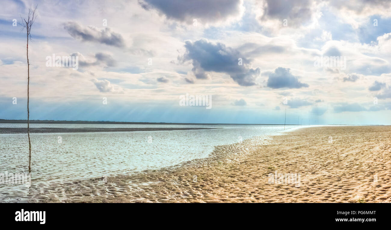 Low tide at the Wadden Sea in North Germany, with a row of trees to measure the water level for crossing the ocean to the East Frisian Islands Stock Photo