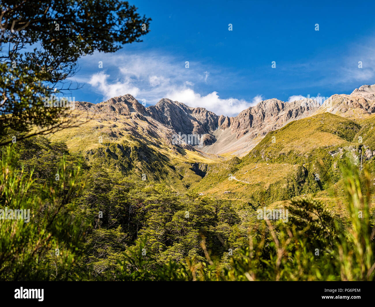 New Zealand, South Island, Canterbury Region, Arthur's Pass National Park, Arthur's Pass - Stock Image