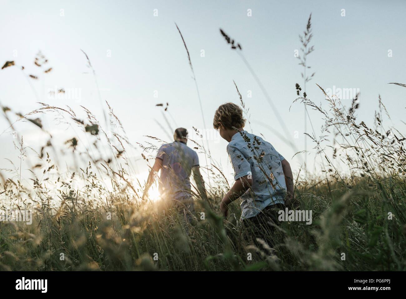 Boy and his father walking in nature at sunset - Stock Image