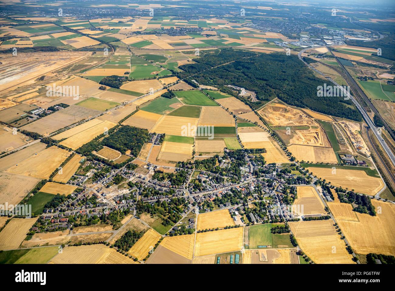 Hambacher Forst, Bürgewald Steinheide, Landschaftsschutzgebiet, Braunkohleabbau, Protest, Waldbesetzung, Manheim, Elsdorf, Rheinland, Nordrhein-Westfa - Stock Image
