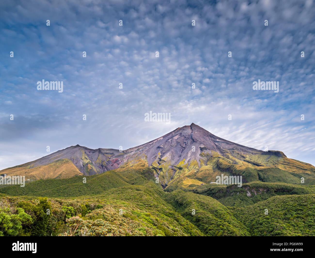 New Zealand, North Island, Egmont National Park, view to Mount Taranaki - Stock Image