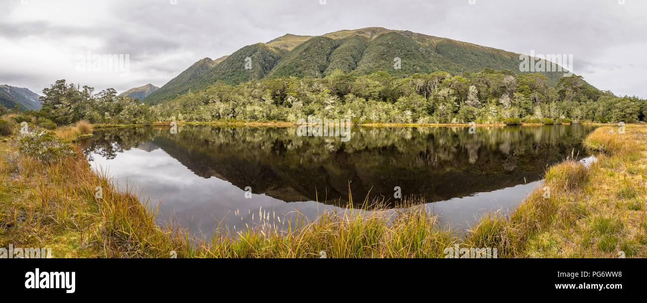New Zealand, South Island, Westcoast Region, at Lewis Pass - Stock Image