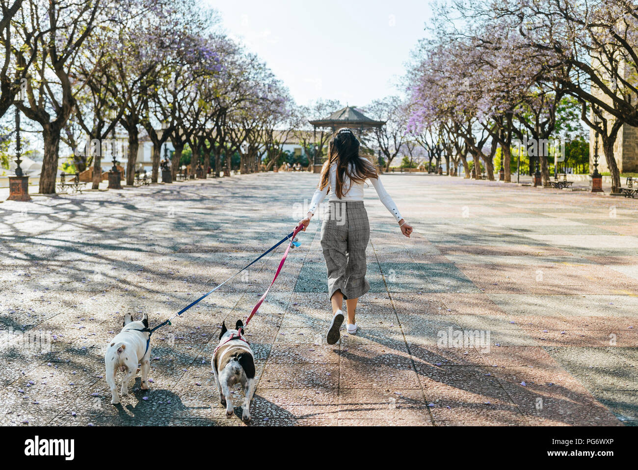Spain, Andalusia, Jerez de la Frontera, Woman running with two dogs on square Stock Photo