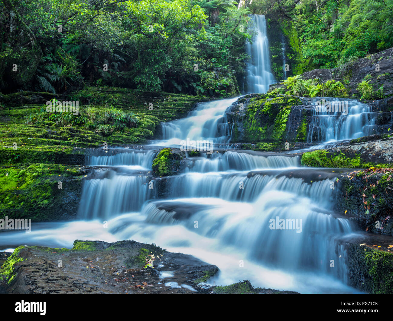 New Zealand, South Island, McLean Falls at Catlins Forest Park - Stock Image