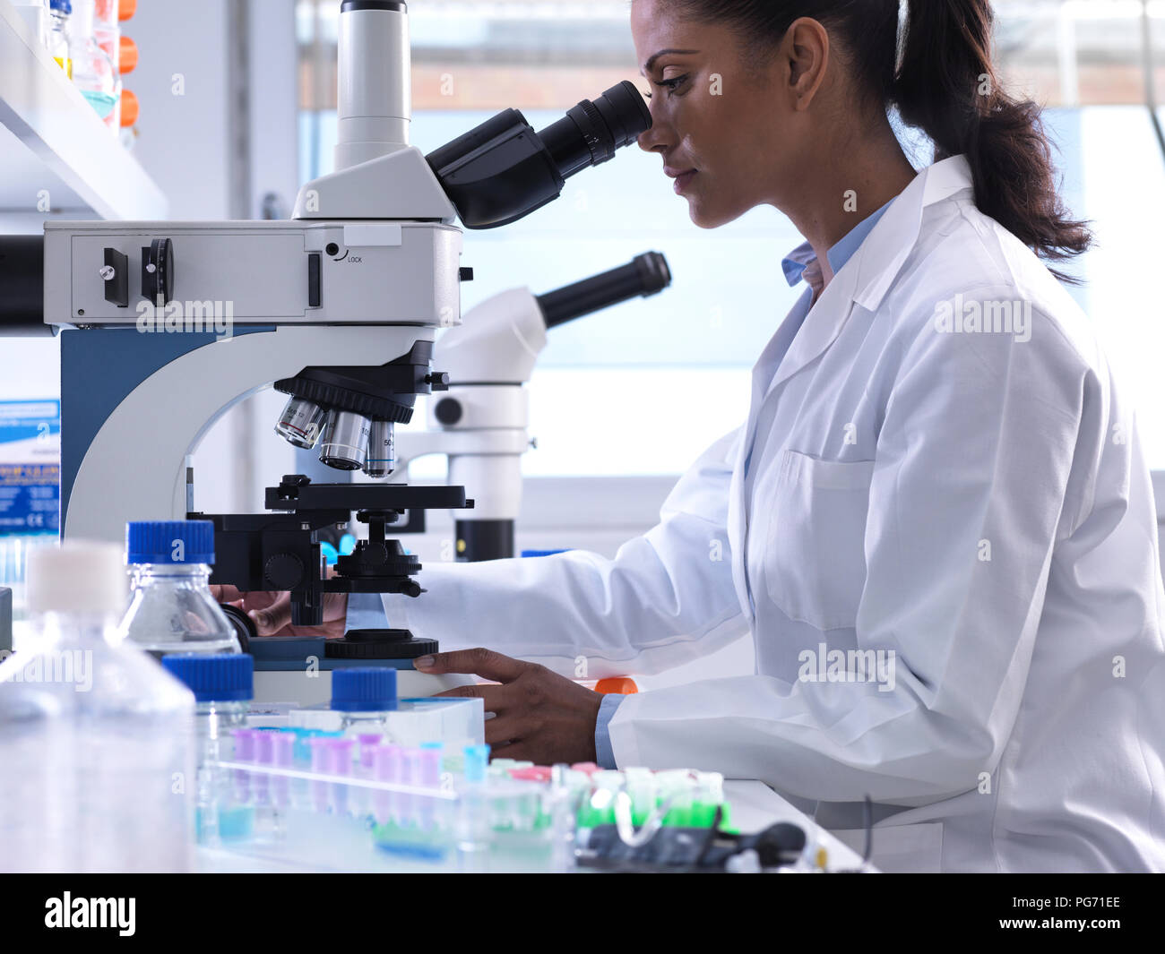 Female scientist examining a human sample on a glass slide under a microscope in the laboratory - Stock Image