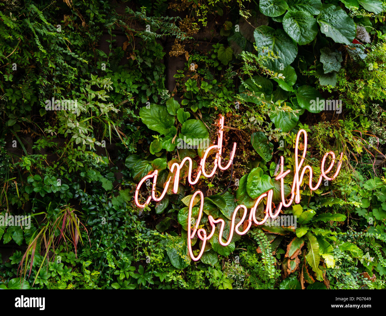 Neon sign in foliage: 'and breathe', Amsterdam, Netherlands - Stock Image