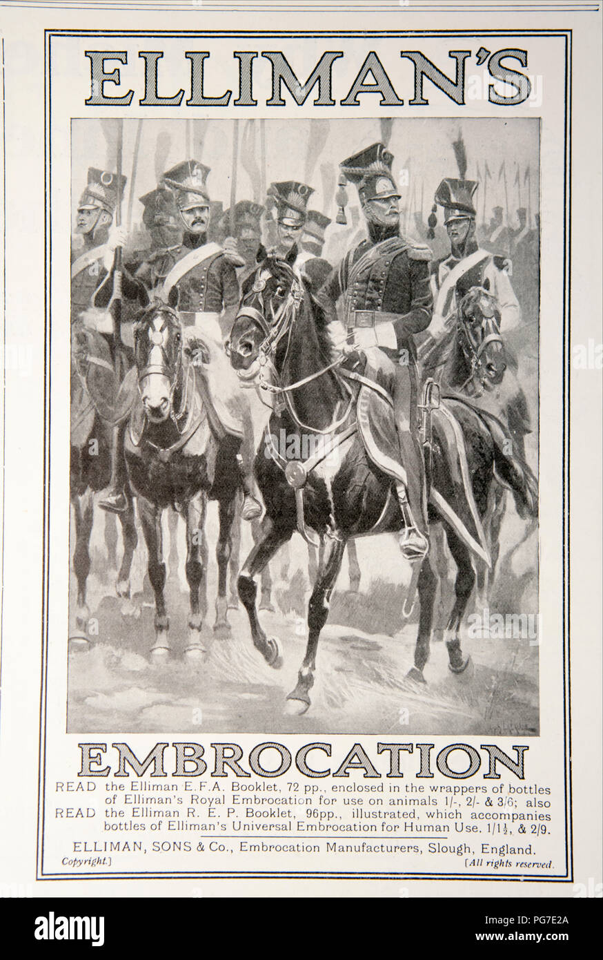 An advert for Elliman's Embrocation. From a magazine from the 1914-1918 period. England UK GB - Stock Image