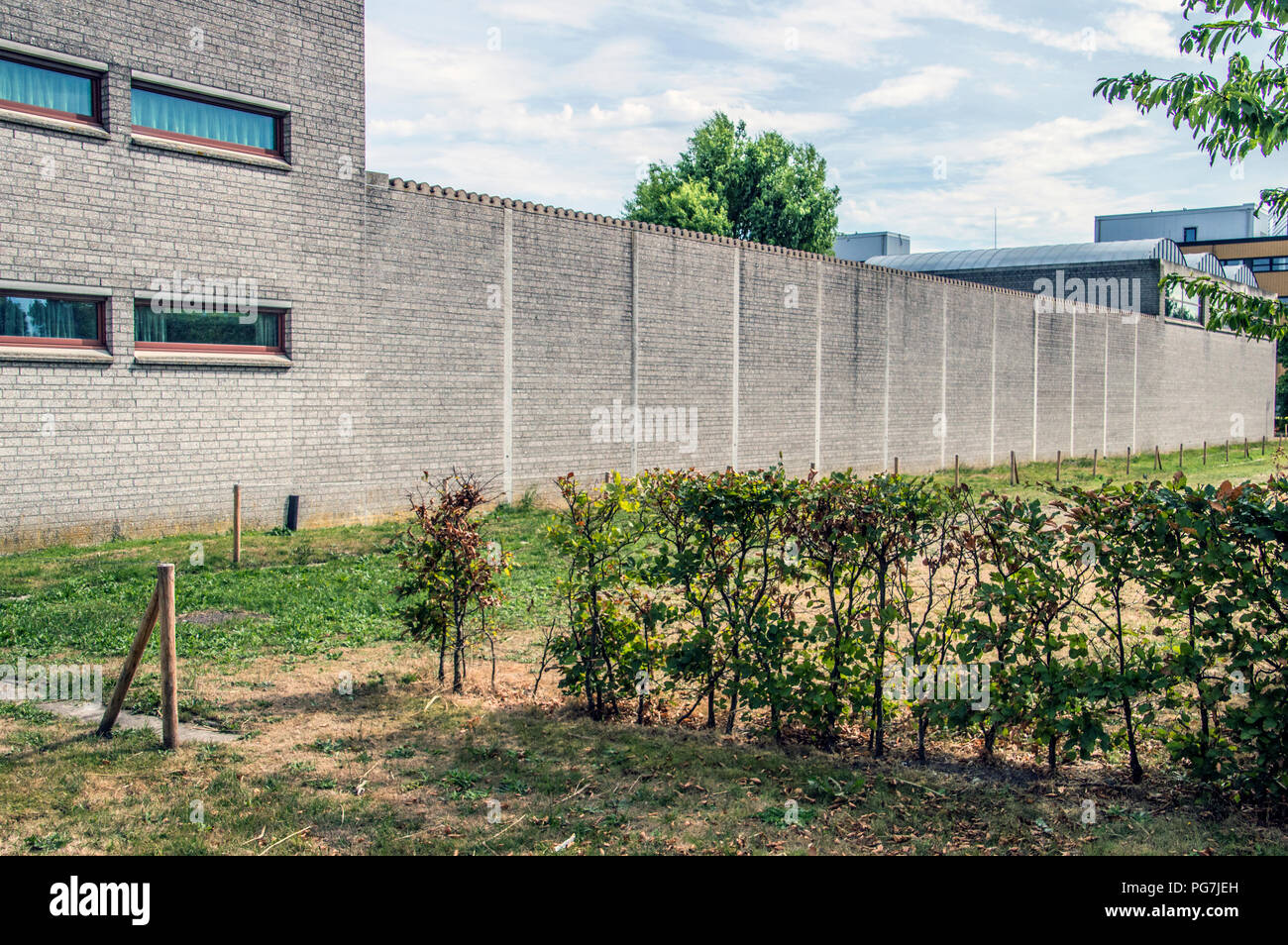 Wall At The Inforsa Forensic Psychiatric Clinic At Amsterdam The Netherlands 2018 - Stock Image