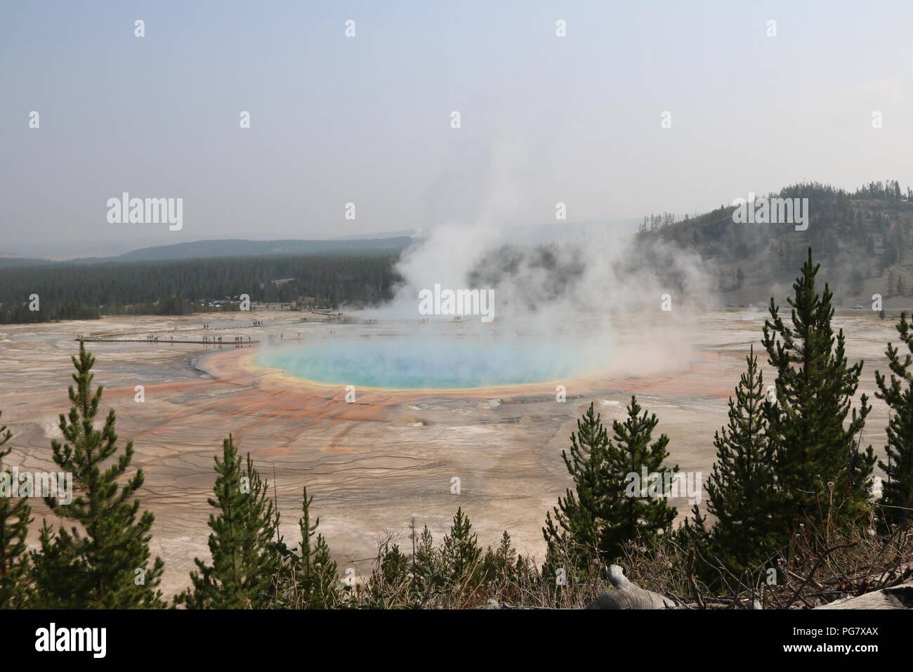 Grand Prismatic Spring at the Midway Geyser basin, Yellowstone National Park - Stock Image