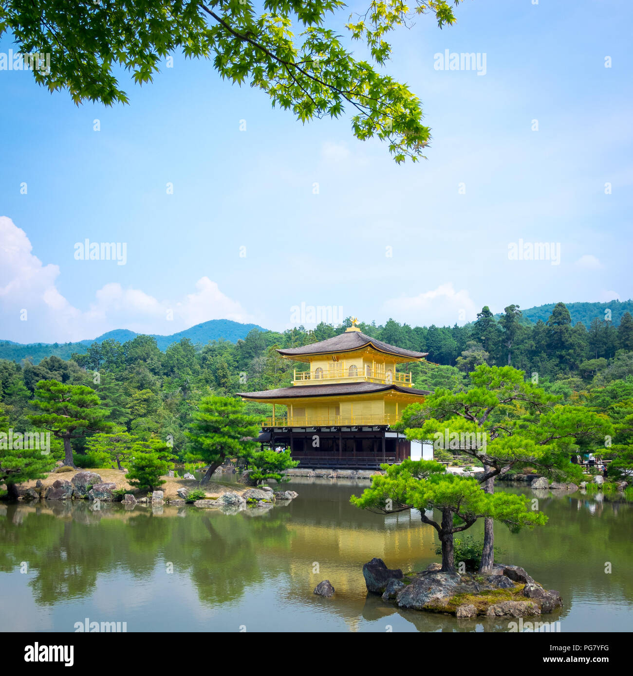 Kinkaku-ji (also known as Kinkakuji or Rokuon-ji), the Temple of the Golden Pavilion, is famous Zen Buddhist temple located in Kyoto, Japan. - Stock Image