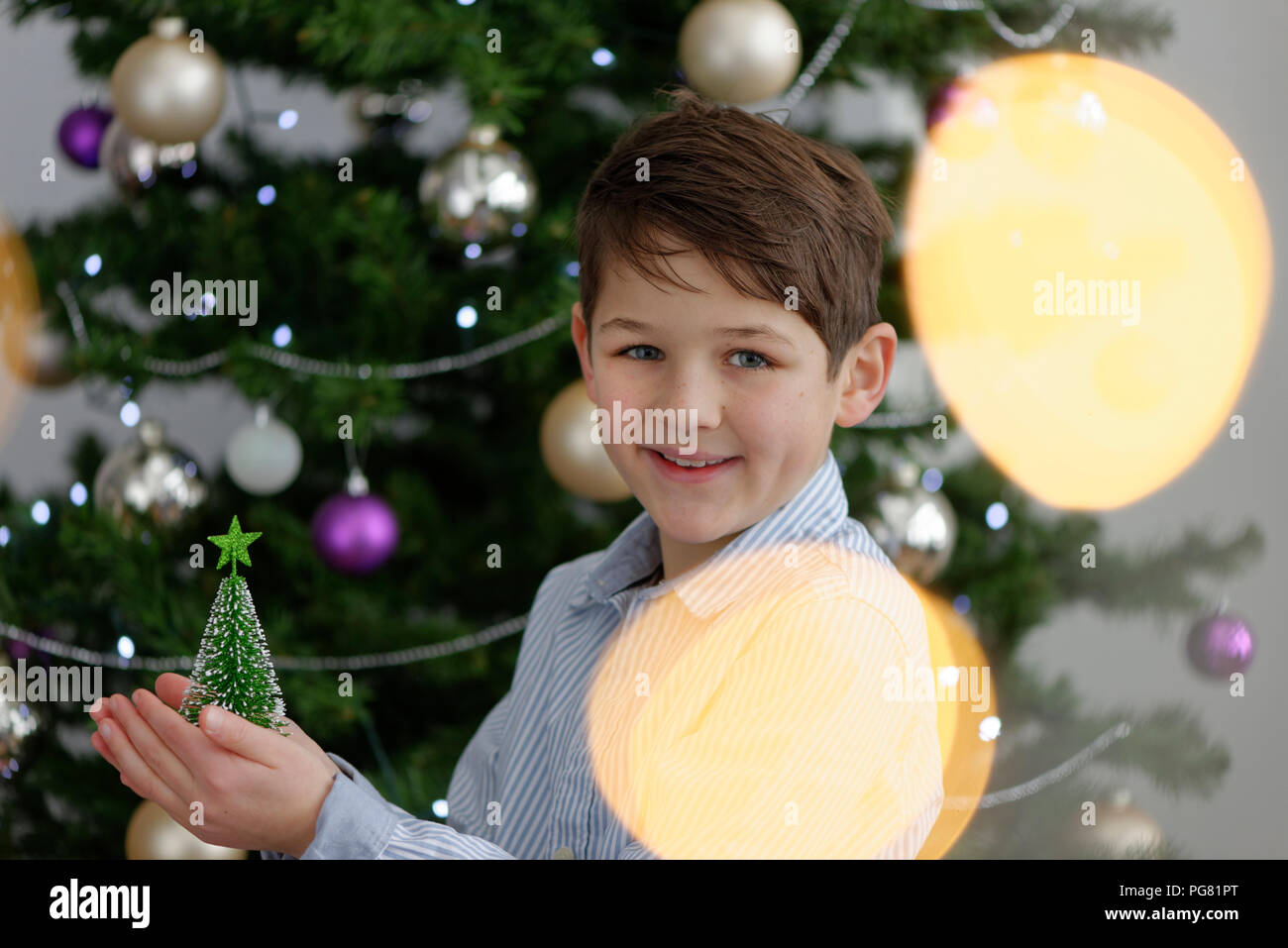 Portrait of smiling little boy with miniature Christmas tree - Stock Image