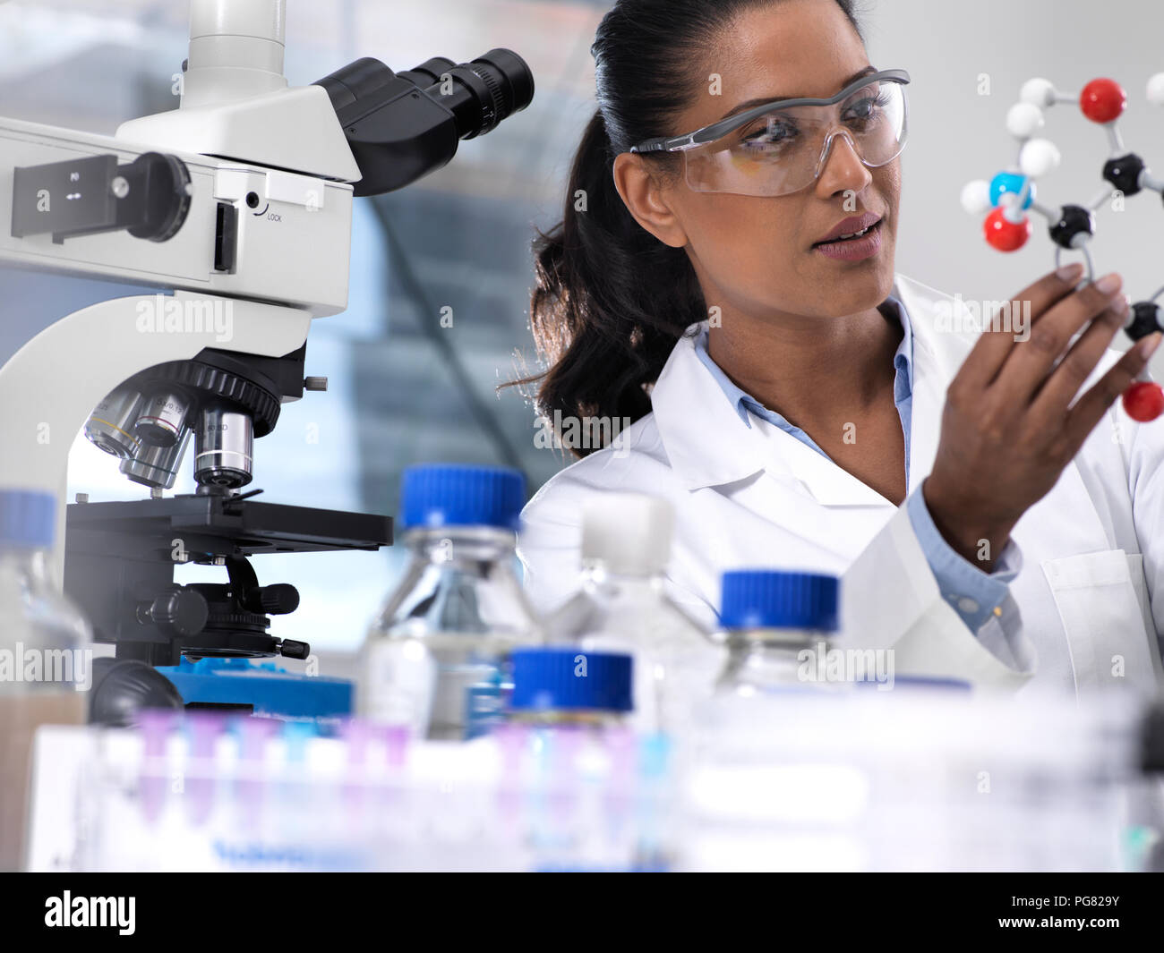 Biotechnology Research, female scientist examining a chemical formula using a ball and stick molecular model in the laboratory - Stock Image