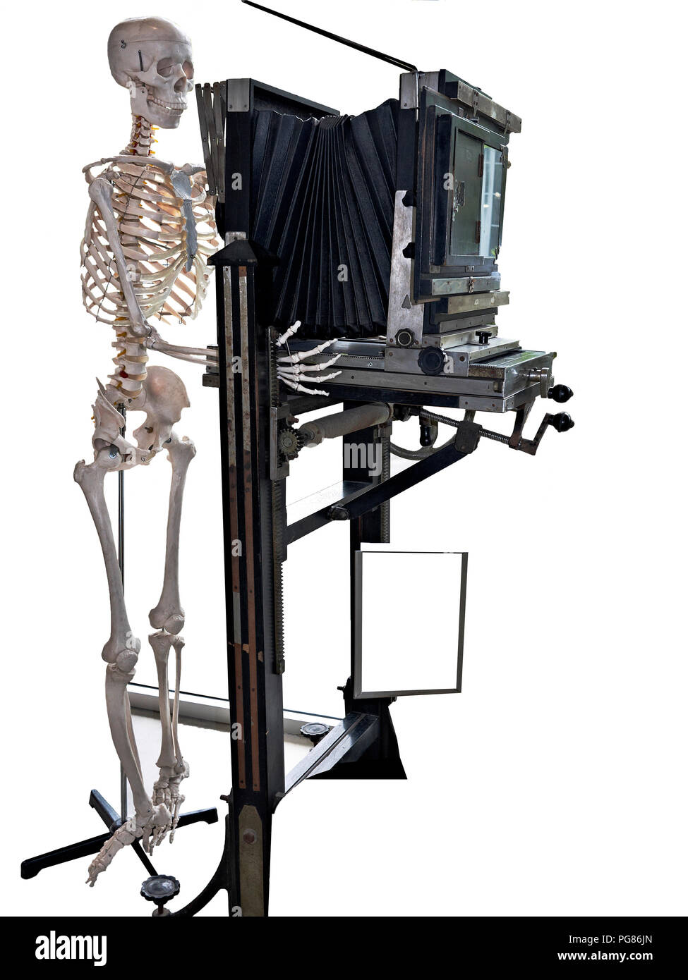 Human skeleton and antique view camera. Concept of the required patience of a large format photographer. - Stock Image