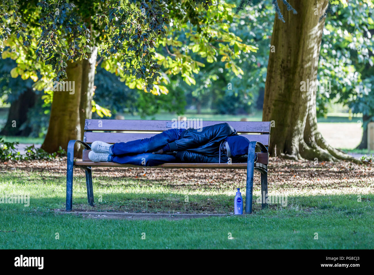 Northampton. U.K. 24th August 2018.  A man sleeping it off or sleeping rough on a park bench in Abington Park this morning, homeless people use the benches and bus shelters around the town park, temperatures were in single figures last night making it feel much colder than of late. Credit: Keith J Smith./Alamy Live News - Stock Image