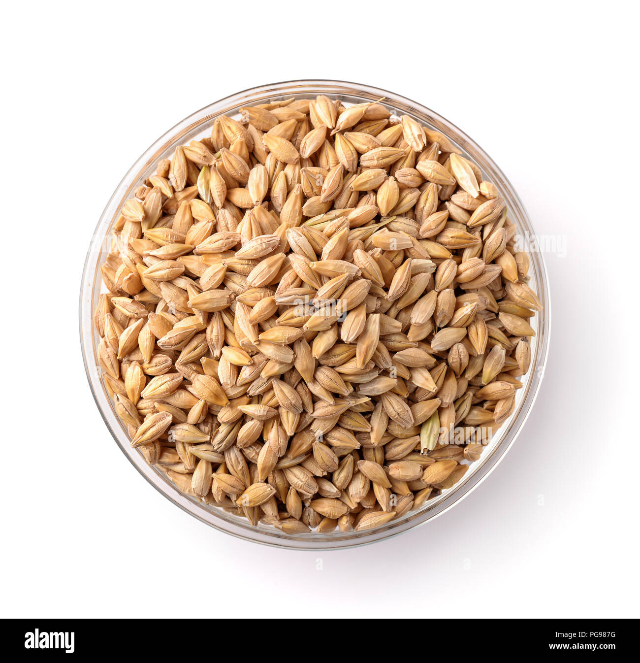 Top view of barley seeds in glass bowl isolated on white - Stock Image