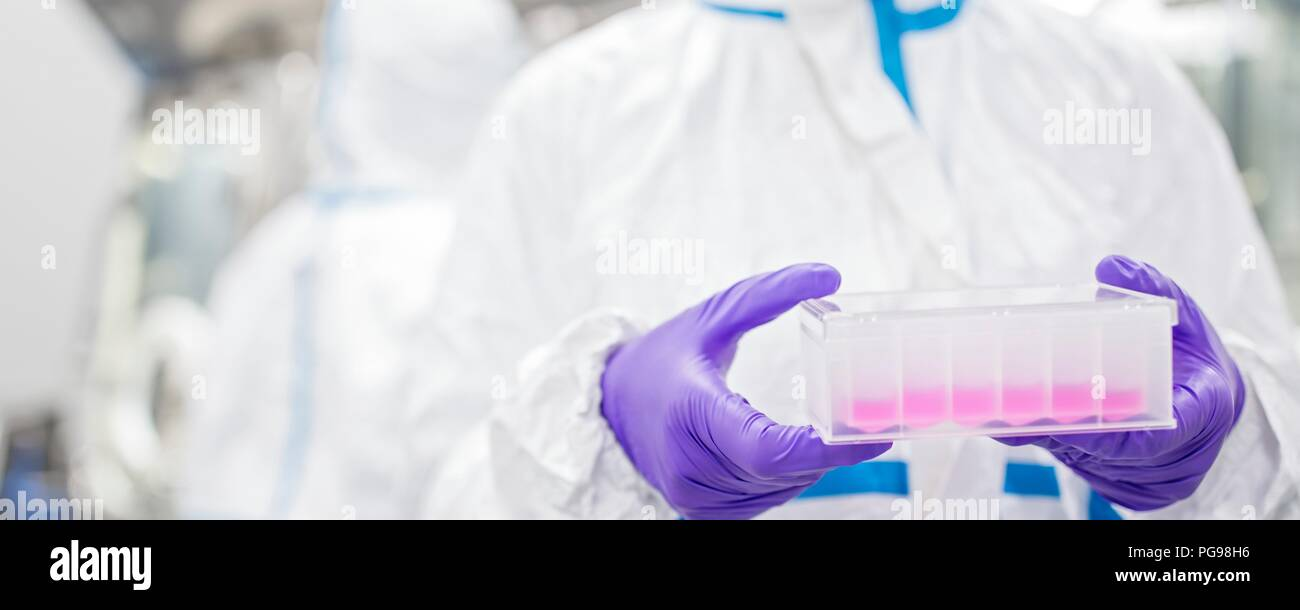 Close-up of a lab technician carrying a cell-based testing kit in a laboratory that engineers human tissues for implant. Such implants include bone and skin grafts. - Stock Image