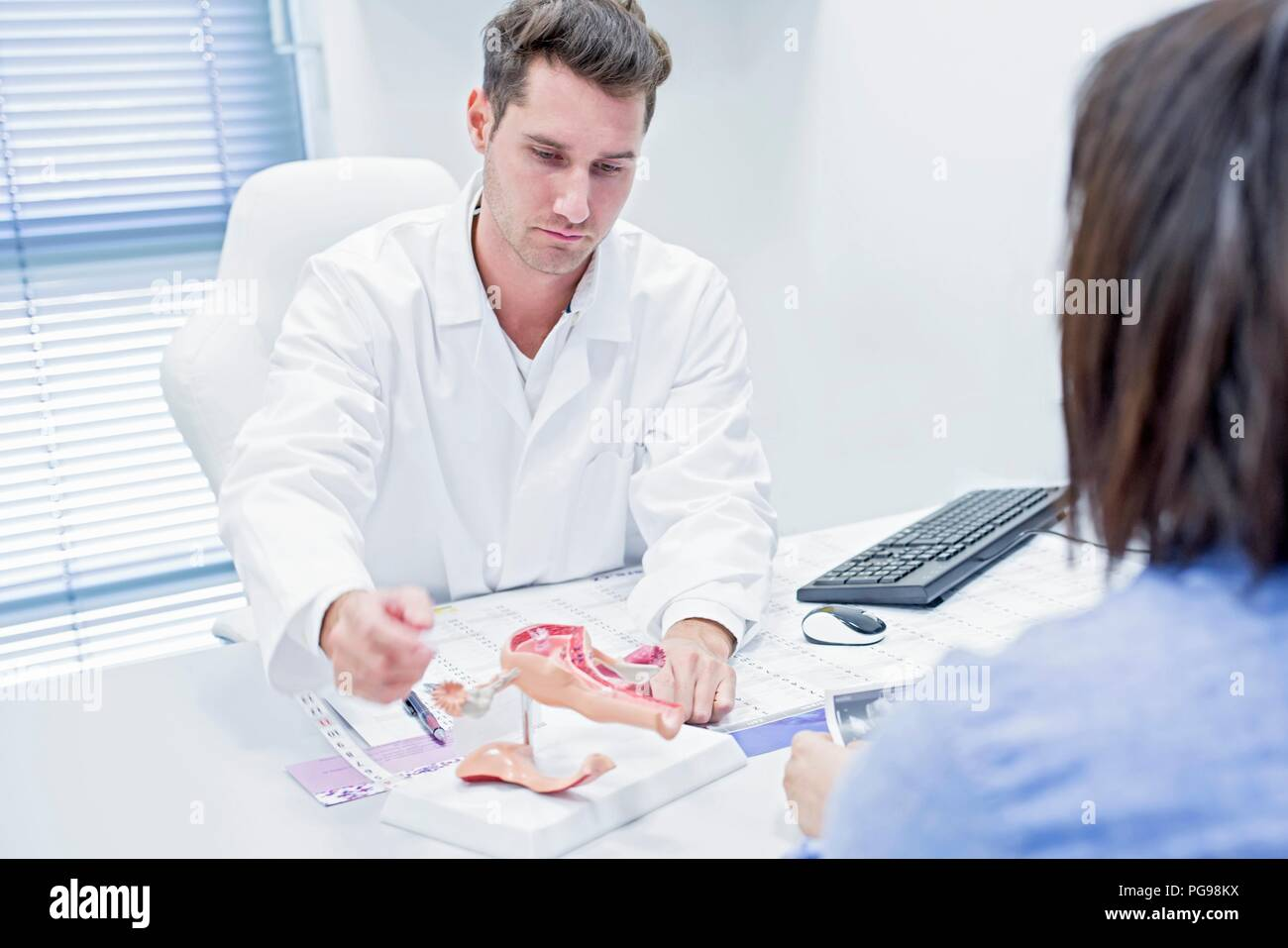 Fertility clinic consultation. Doctor showing a patient a model of the female reproductive tract. - Stock Image
