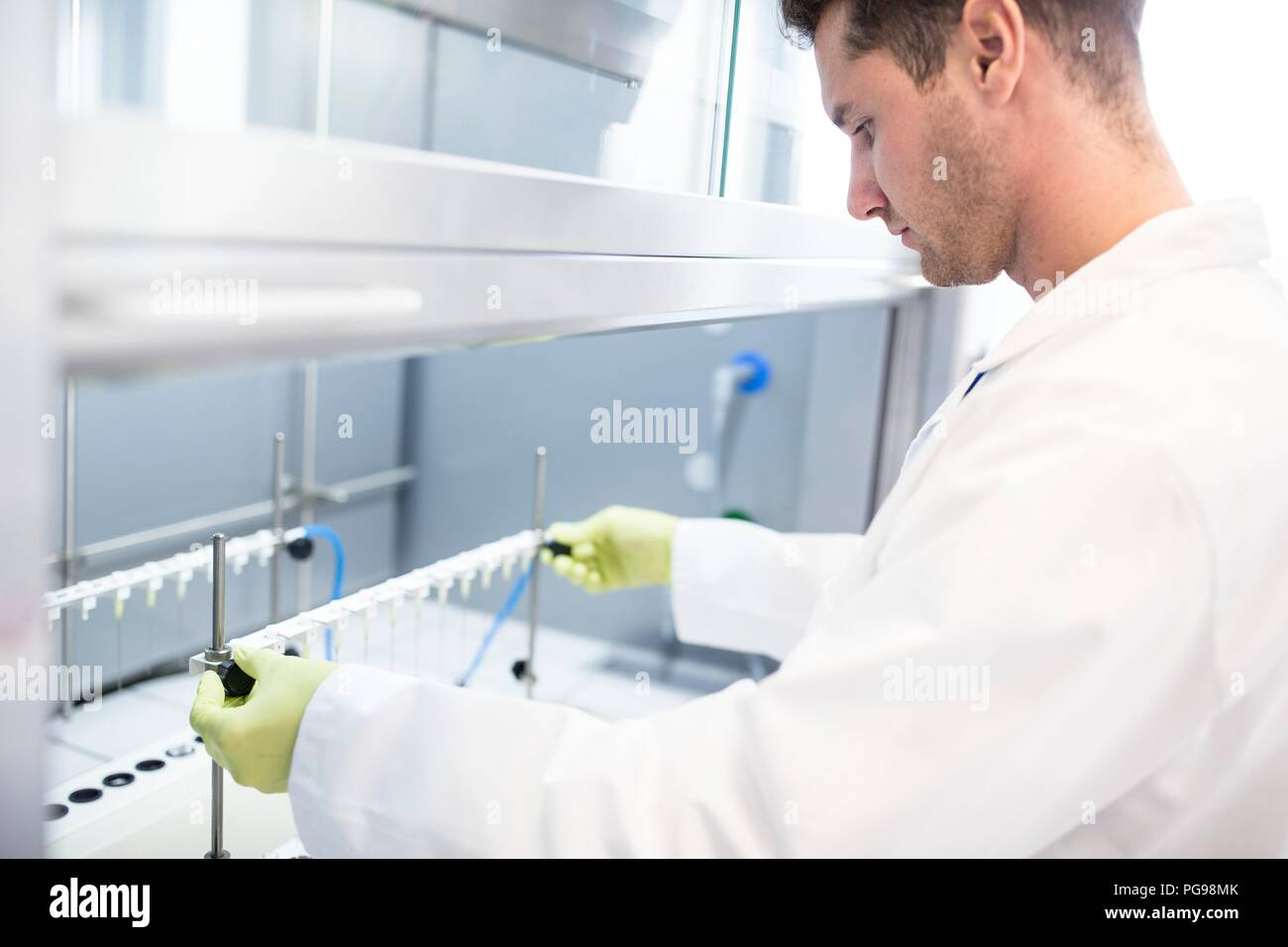 Solid phase extraction (SPE) columns being placed on a stand. SPE is used to separate biological compounds from a mixture for further analysis. - Stock Image