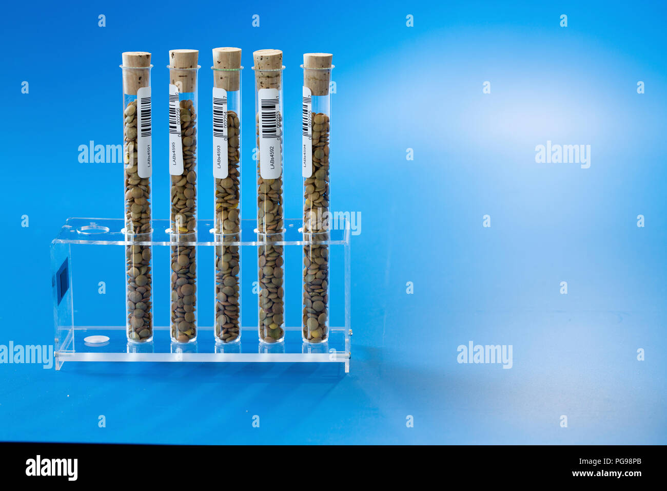 Agriculture research, conceptual image. - Stock Image