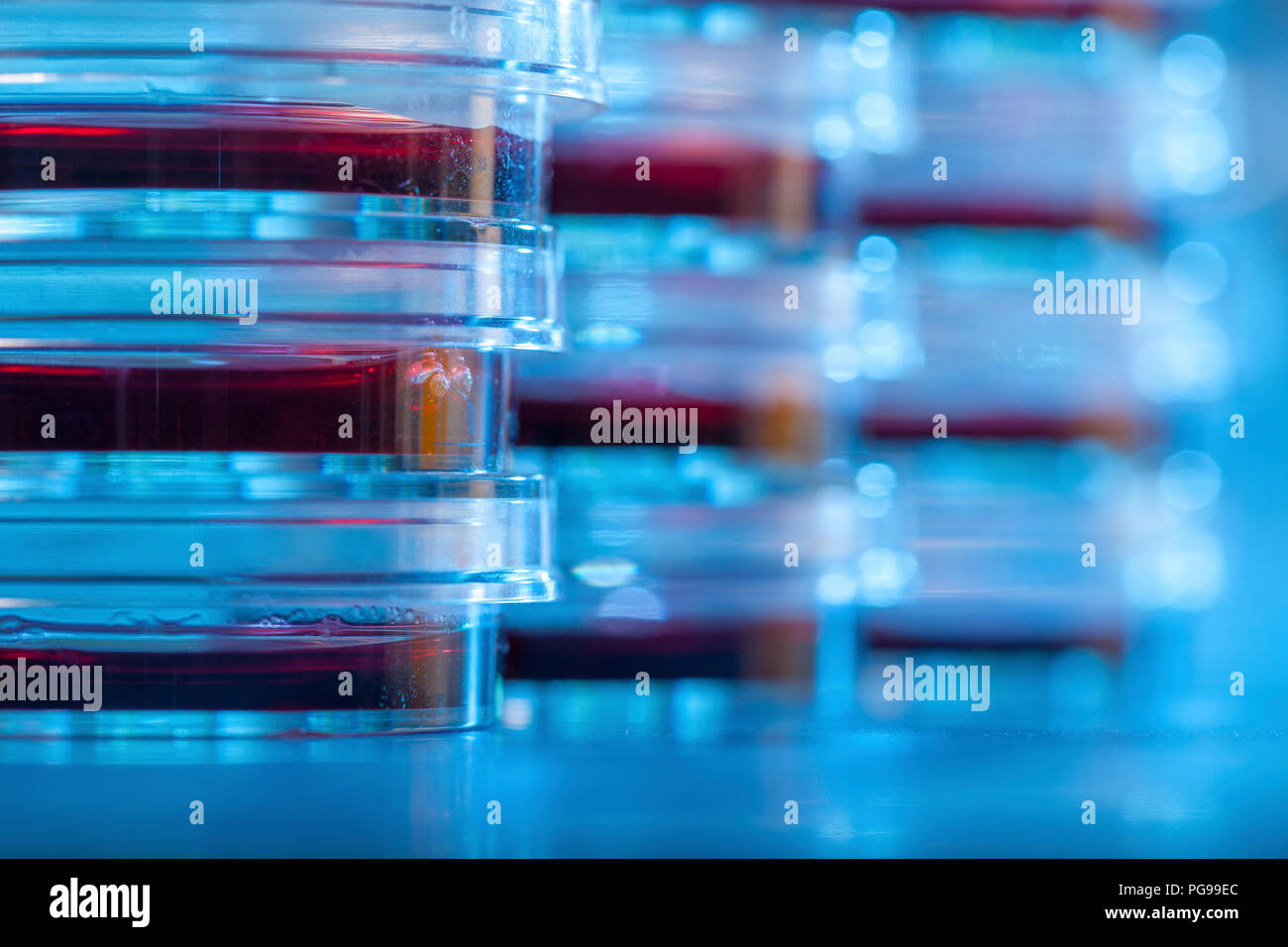 Microbiology research. - Stock Image