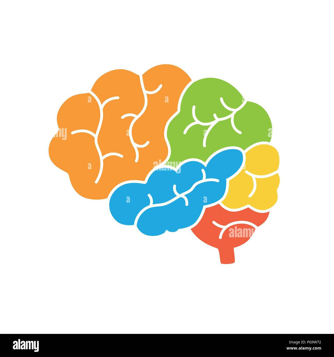 Side View Brain Diagram - Library Of Wiring Diagram •