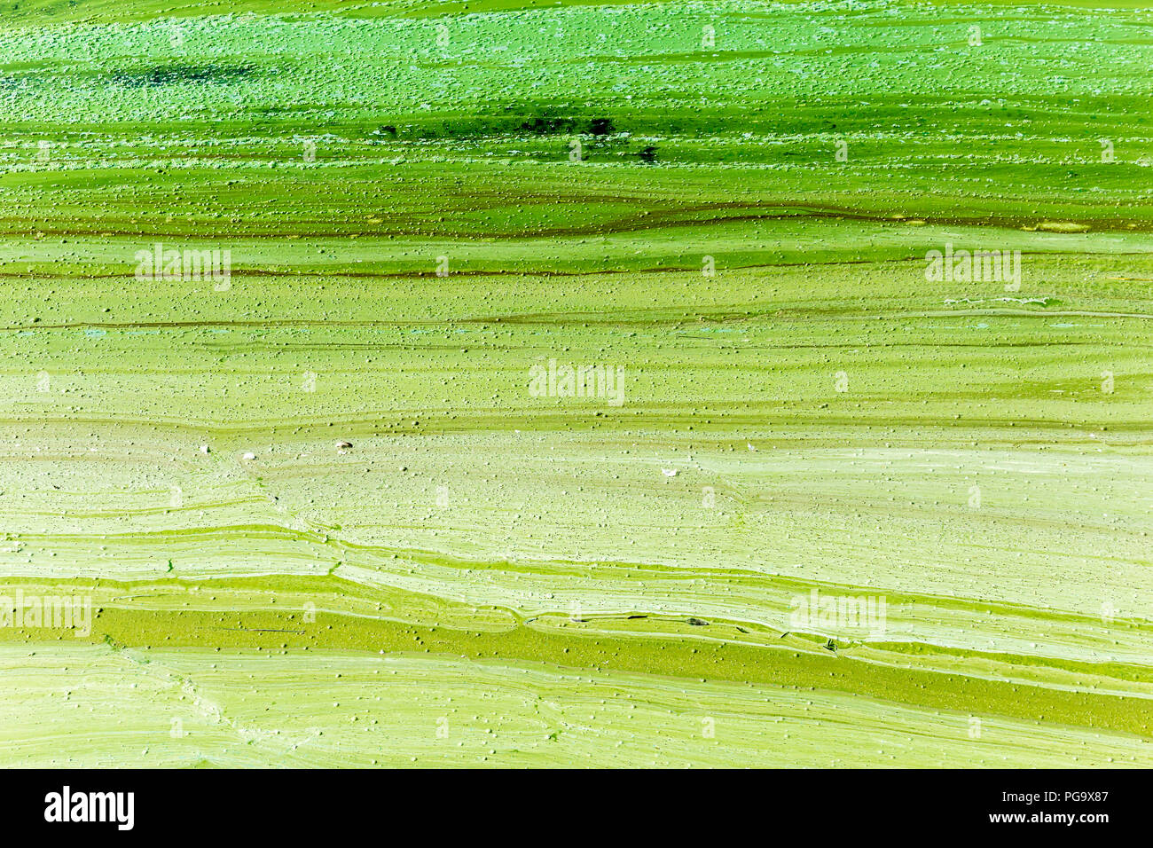 Algal bloom.Phytoplankton blooms in the sea or freshwater.Abstract texture and background for the site about lake, sea,ecology,art, seasons,disasters. - Stock Image