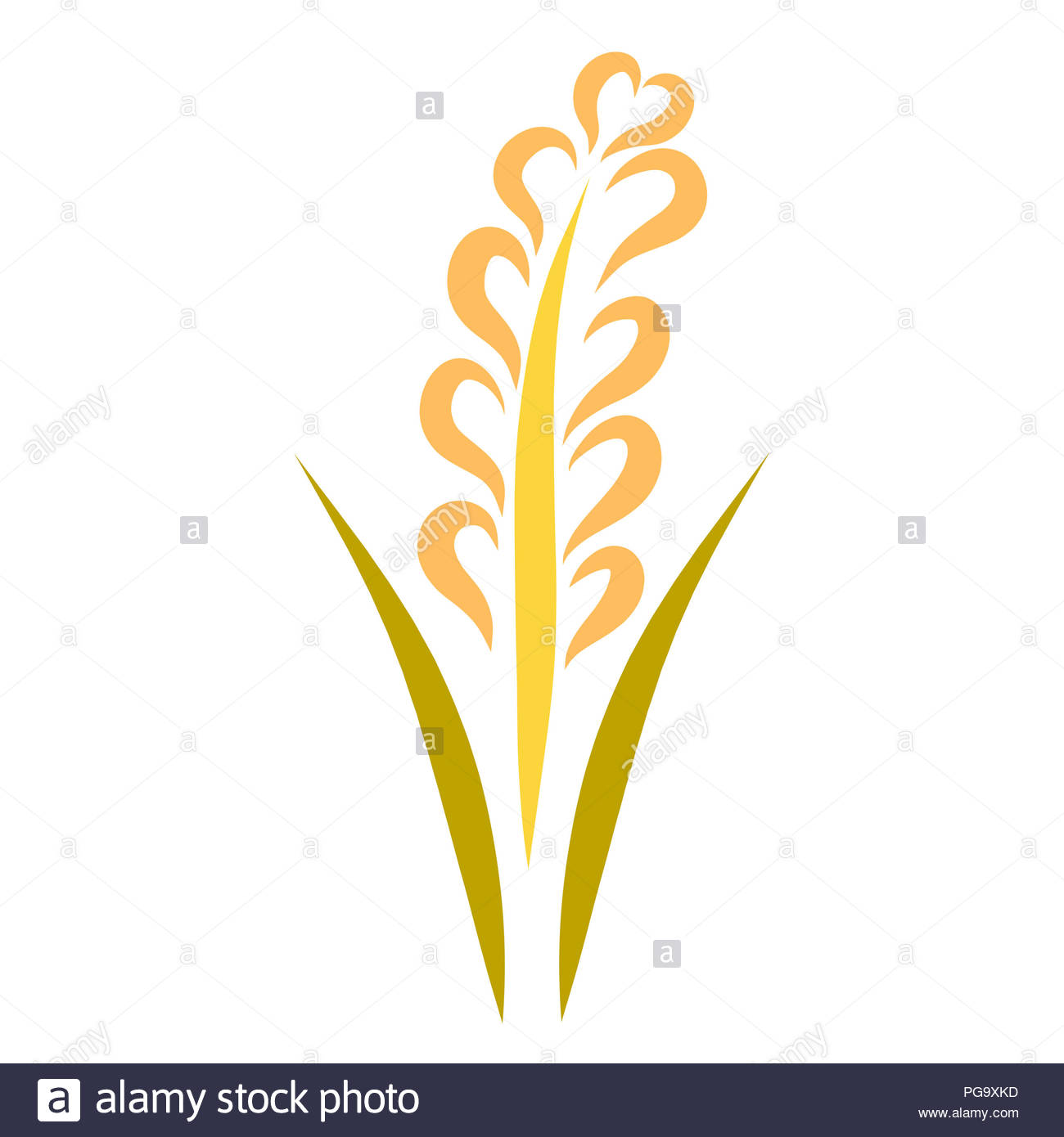 Wheat ear with a heart, a useful plant Stock Photo