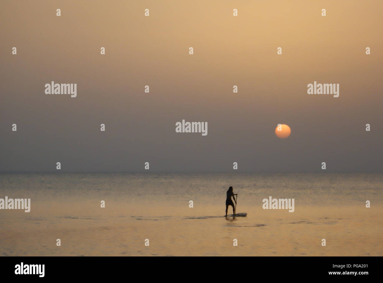 Paddle boarding at sunset in the Caribbean Sea off Seven Mile Beach in the Cayman Islands. - Stock Image