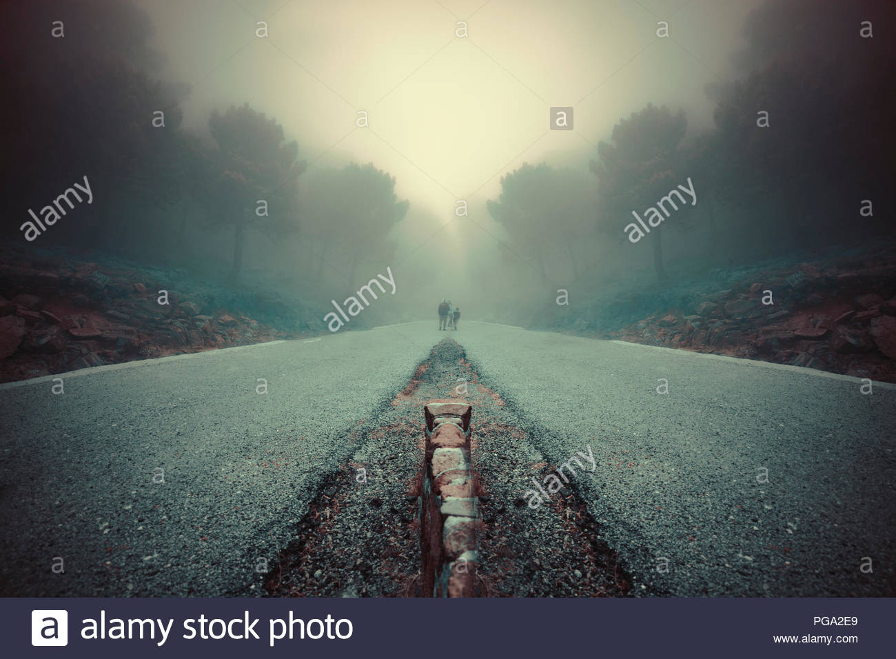 Bilateral Symmetry road in a foggy day - Stock Image