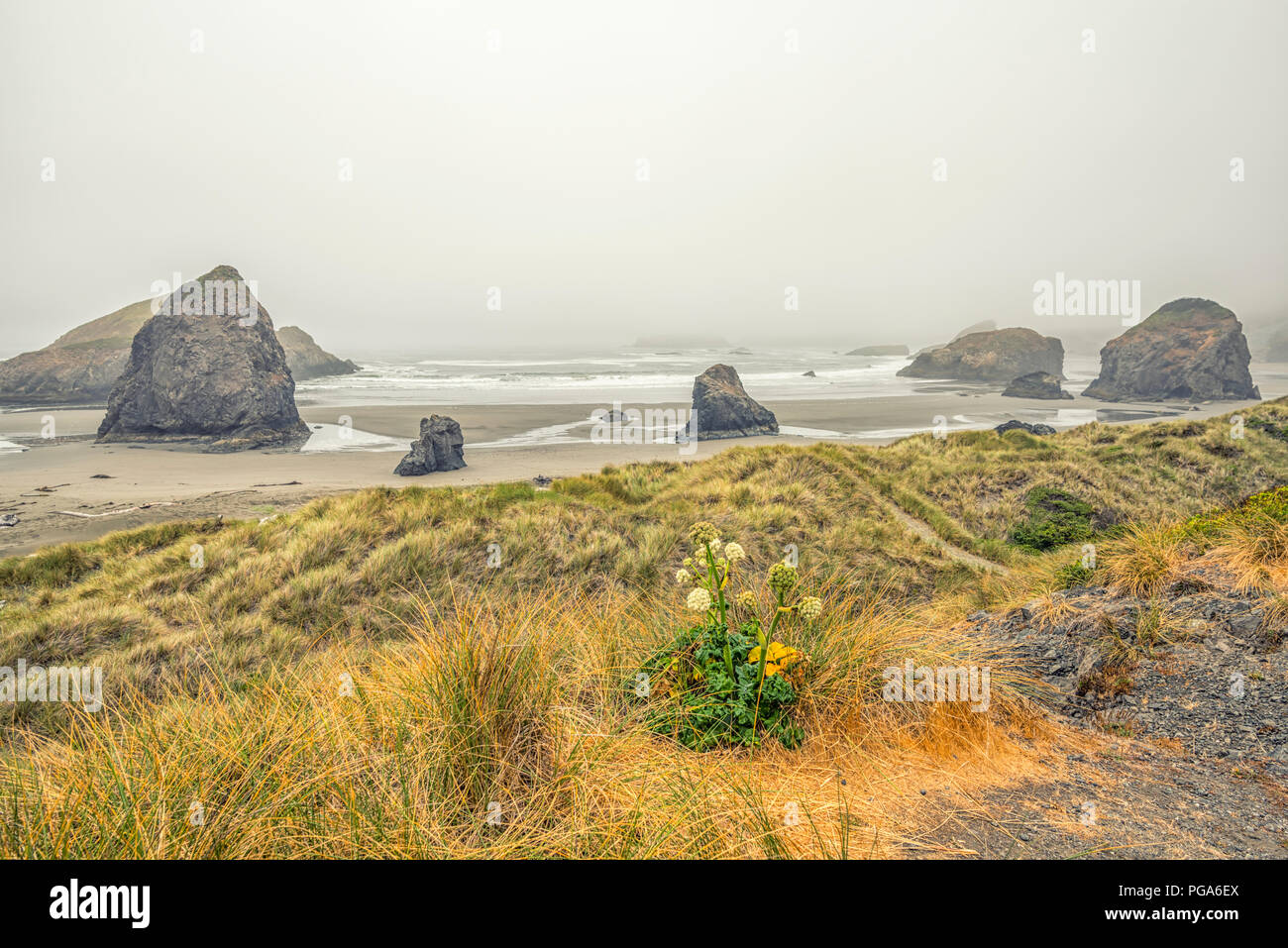 Meyers Beach. Pistol River Scenic Viewpoint.  Southern Oregon coast, USA. - Stock Image