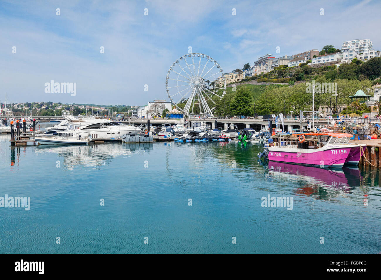 21 May 2018: Torquay, Devon, England, UK - The marina and English Riviera Wheel on a sunny spring day. - Stock Image