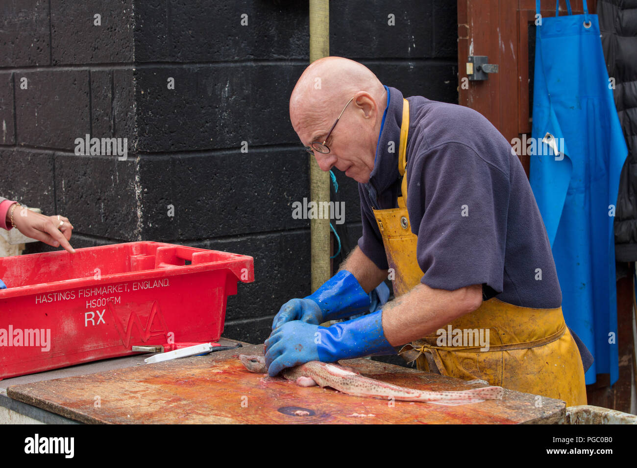 Expert, sole trader fishmonger, sells, prepares spotted cat shark on Hastings beach fish market. Curious bystanders enjoy and support local community. - Stock Image