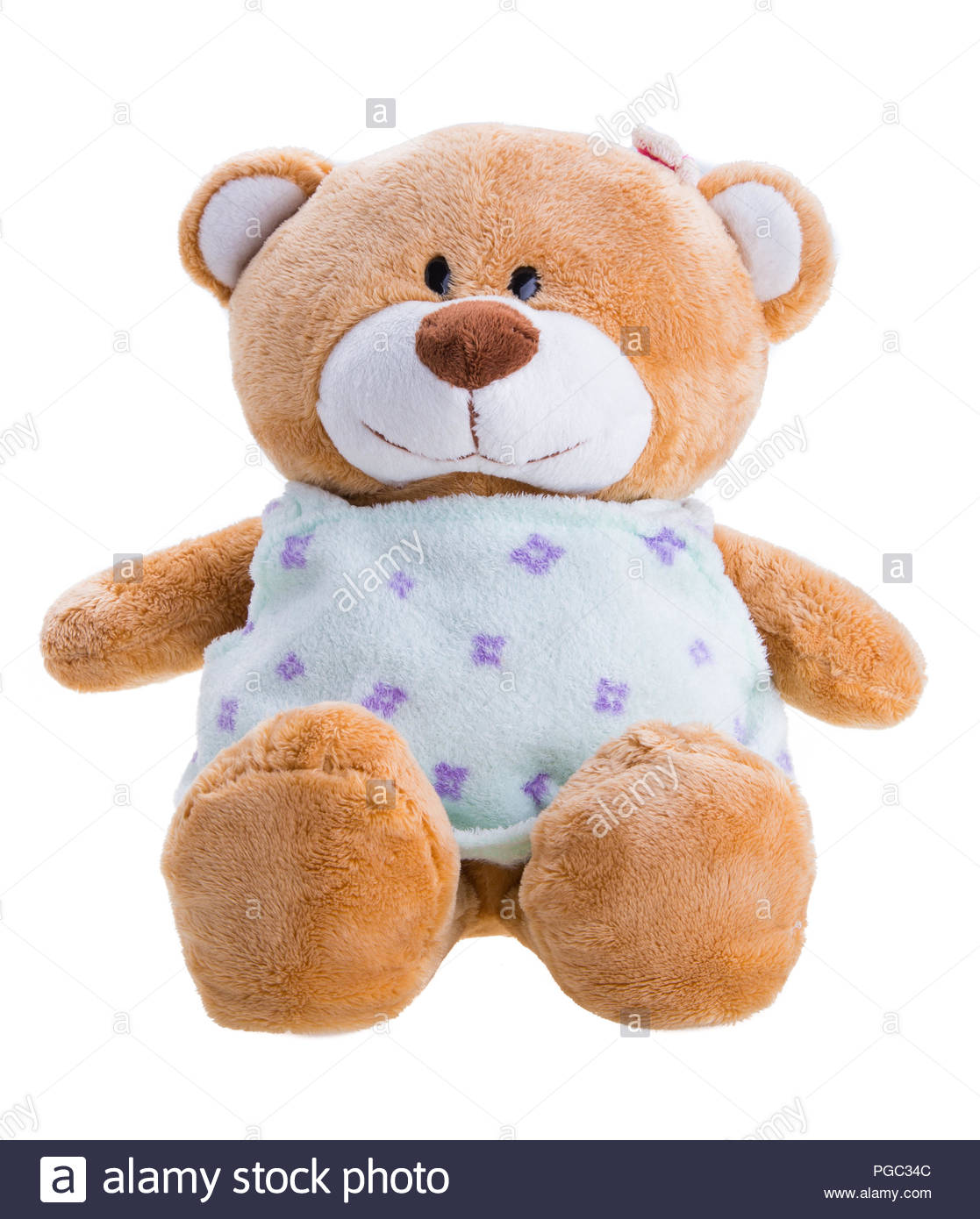 Bear Stock Photos Images Page 191 Alamy Canon Eos Couple Teddies Toy Teddy Isolated On White Image