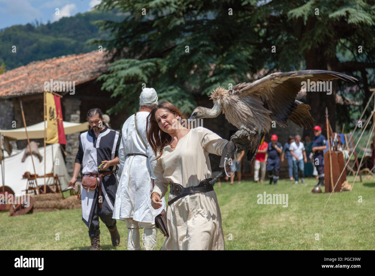A falconer assistant bringing a bird of prey at the time of a medieval falconry show, at Barga (Tuscany - Italy). Assistante de fauconnier, à Barga. - Stock Image
