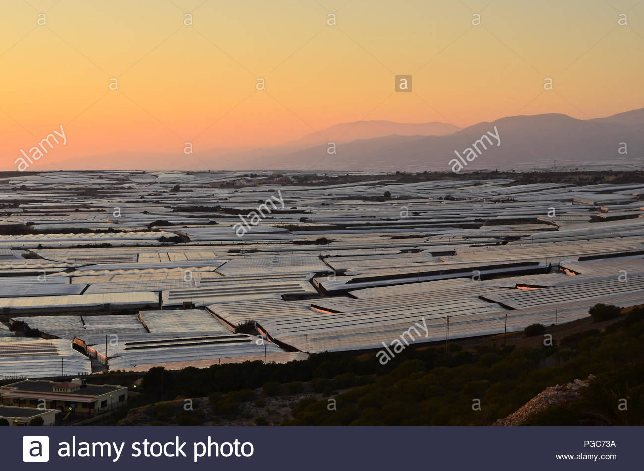 Plastic landscape, field of greenhouses glittering in evening light. Almerimar province of Almeria Southern Spain Europe. - Stock Image