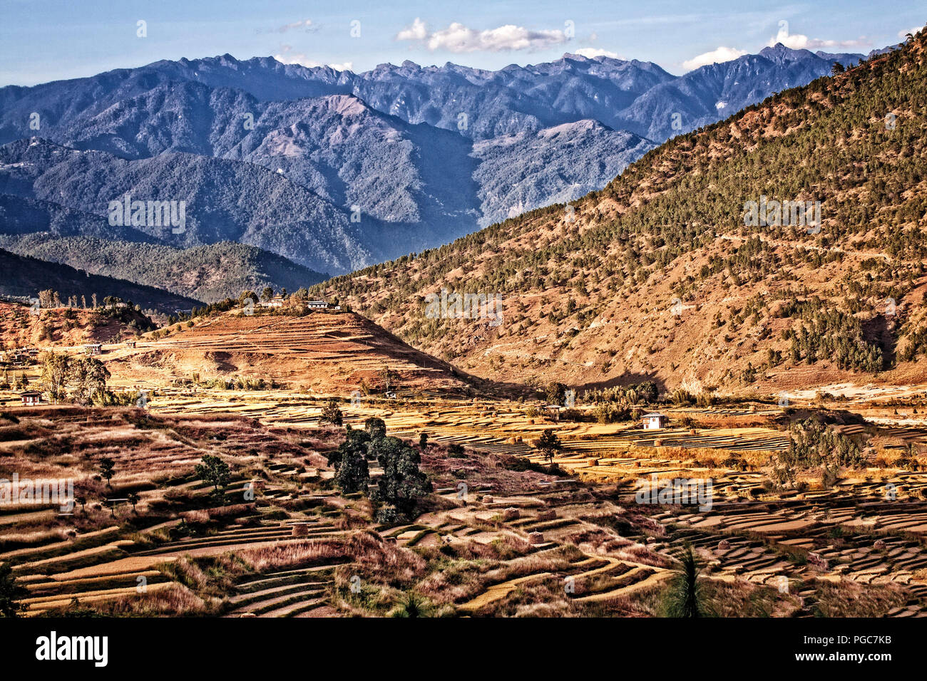 The Chime Lhakhang is located 10 kilometres from Punakha near a village called Sopsokha. - Stock Image