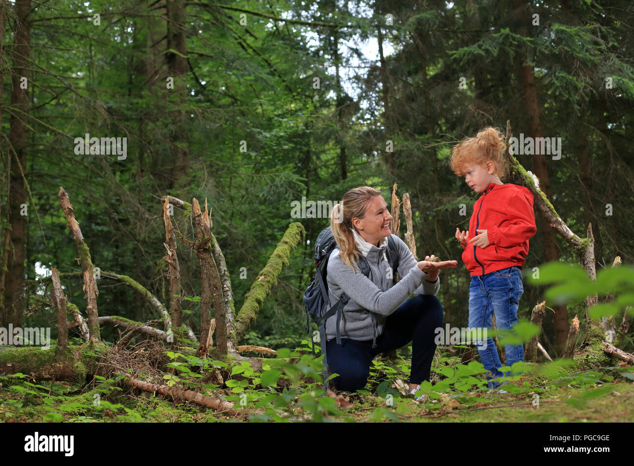 Outdoors with Kid in forest showing things - Stock Image