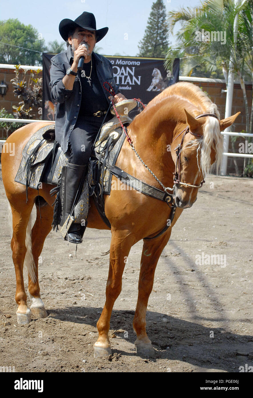 Joan Sebastian Horses For Sale