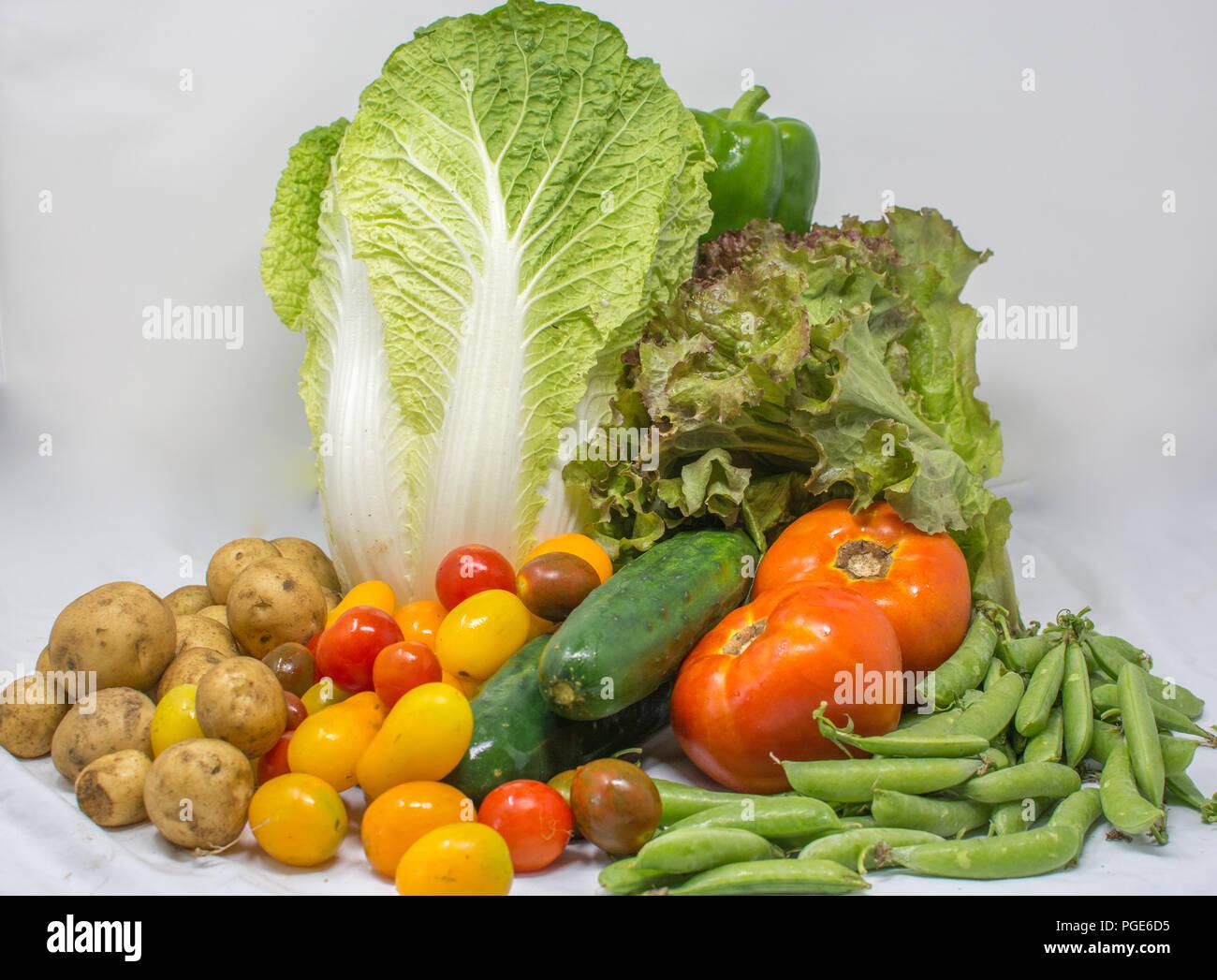 Organic Veggies Basket from Family Farmers - Stock Image