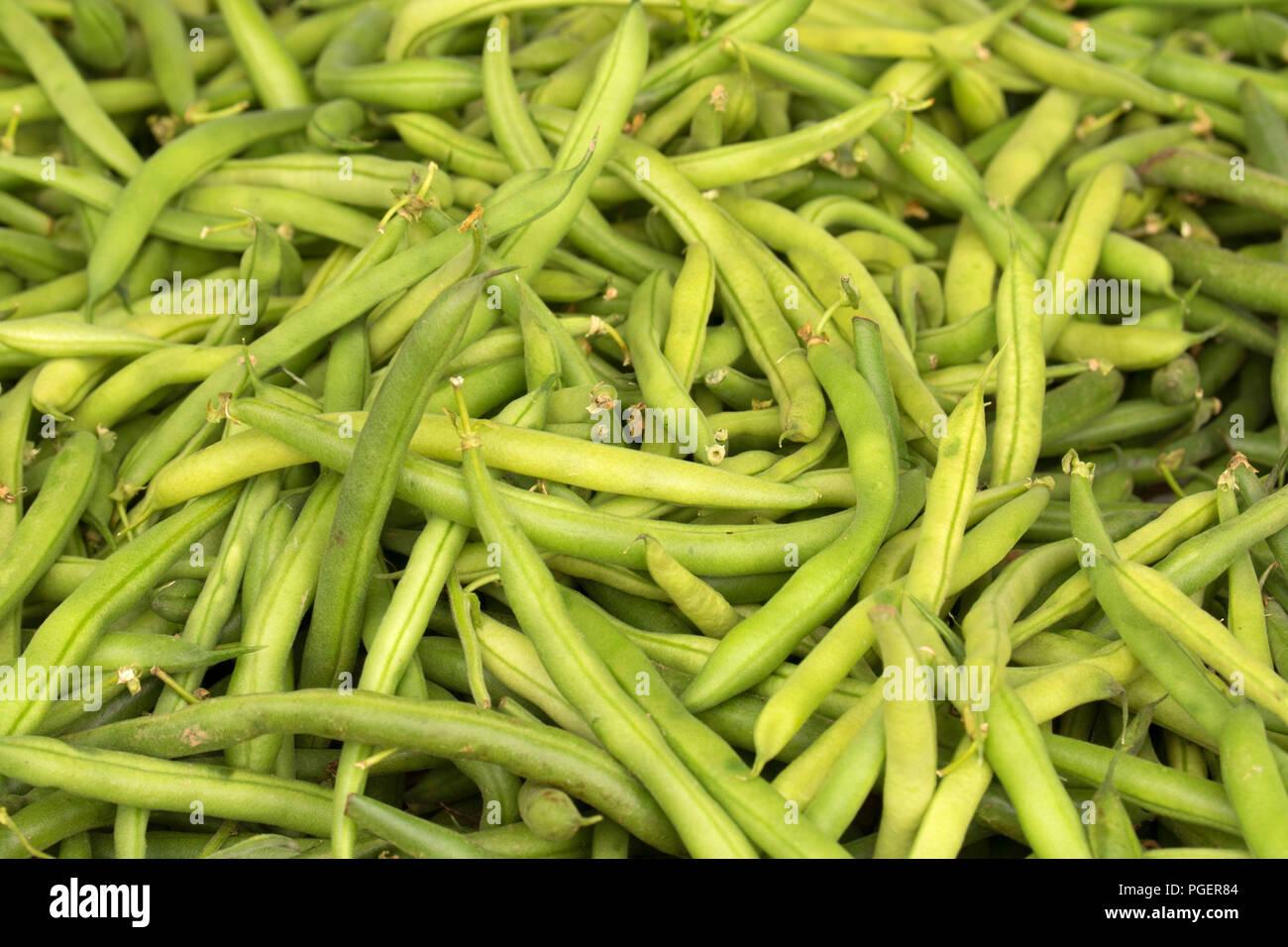 String beans, Salem Saturday Marker, Salem, Oregon - Stock Image