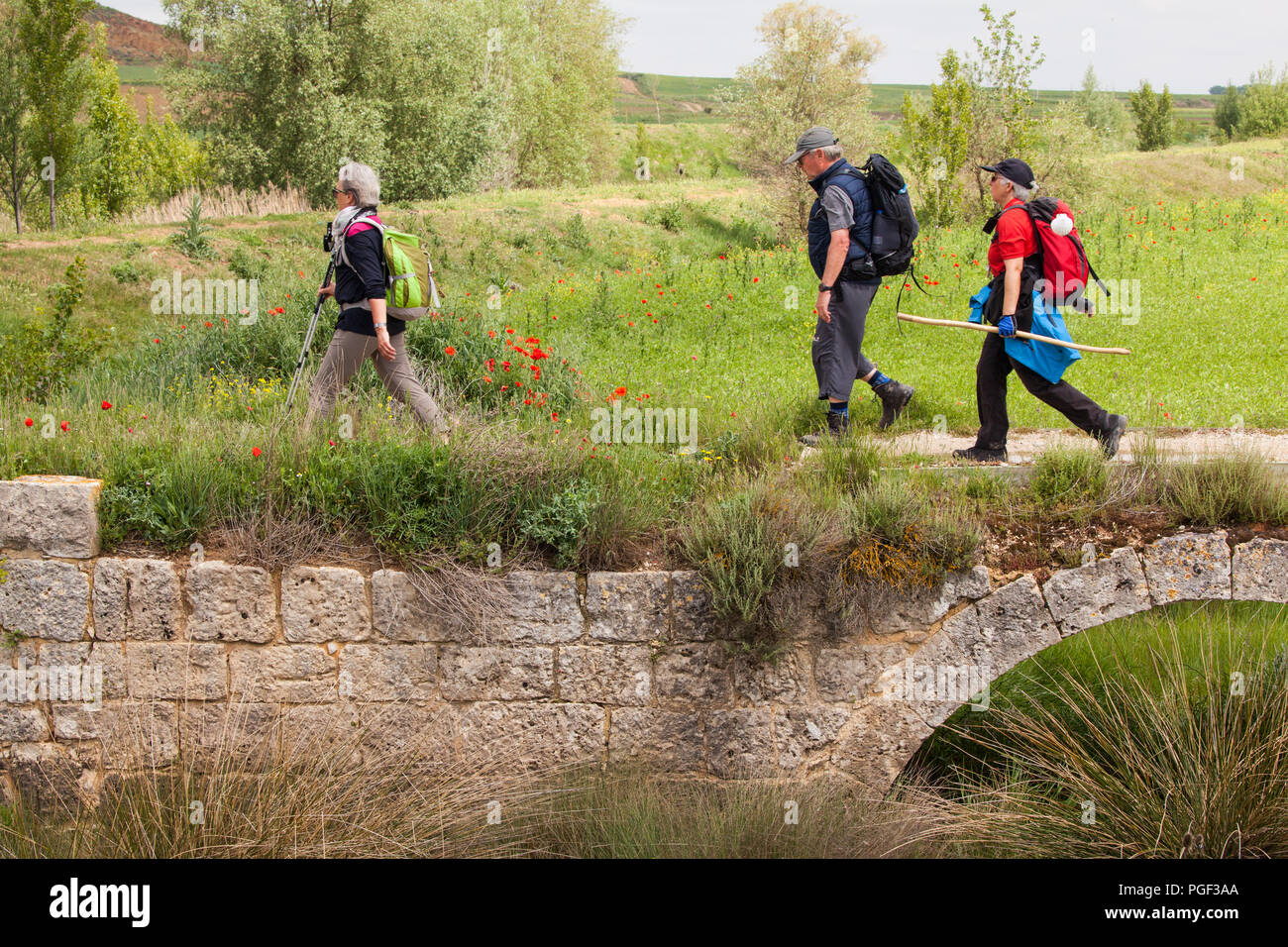 Pilgrims walkers walking along the Roman Causeway on the way of St James the Camino de Santiago footpath between Castrojeriz and Fromista - Stock Image
