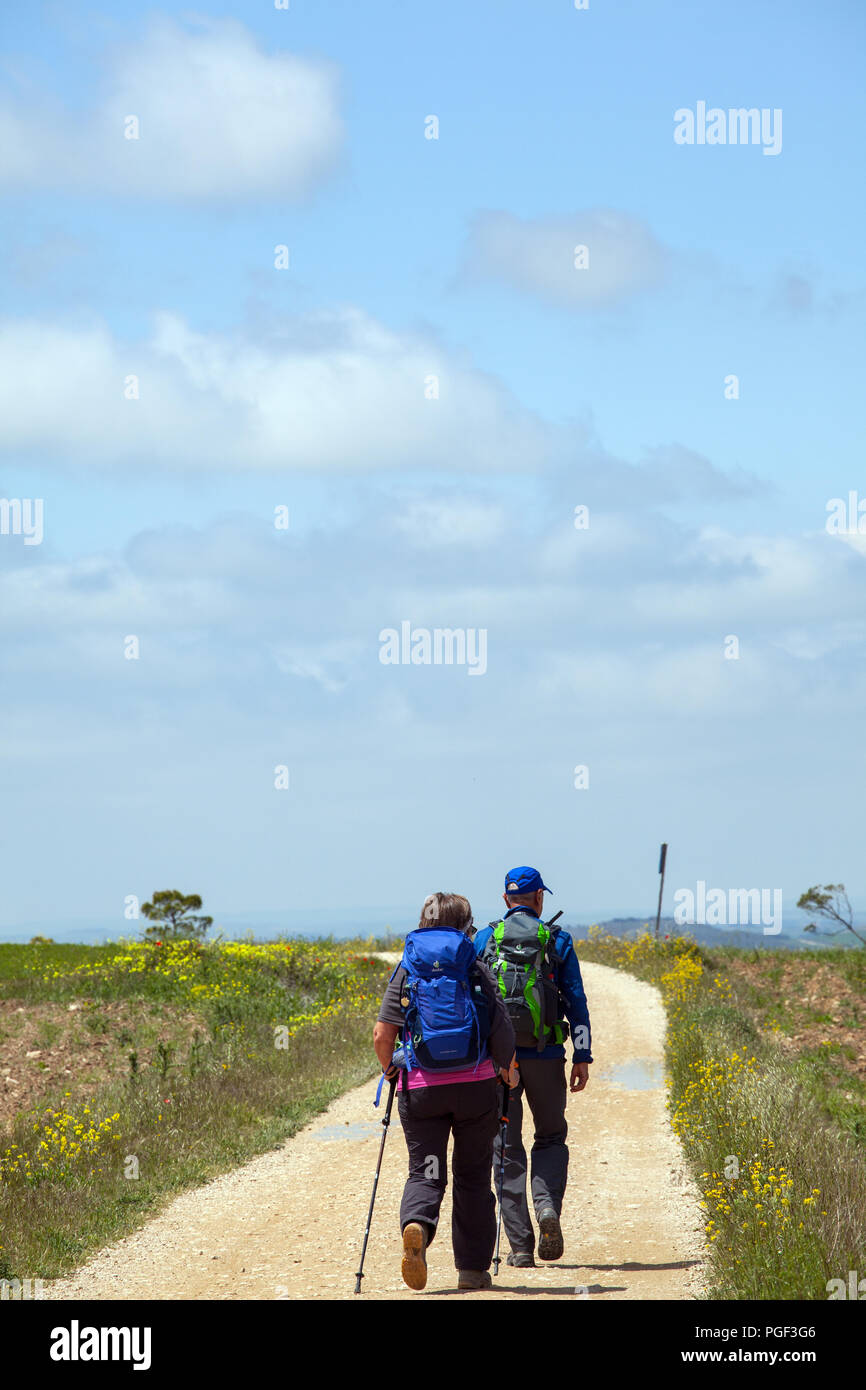 Two pilgrims walking on the Camino de Santiago the way of St James on the Meseta just out of Castrojeriz towards Fromista Castille y Leon Spain - Stock Image