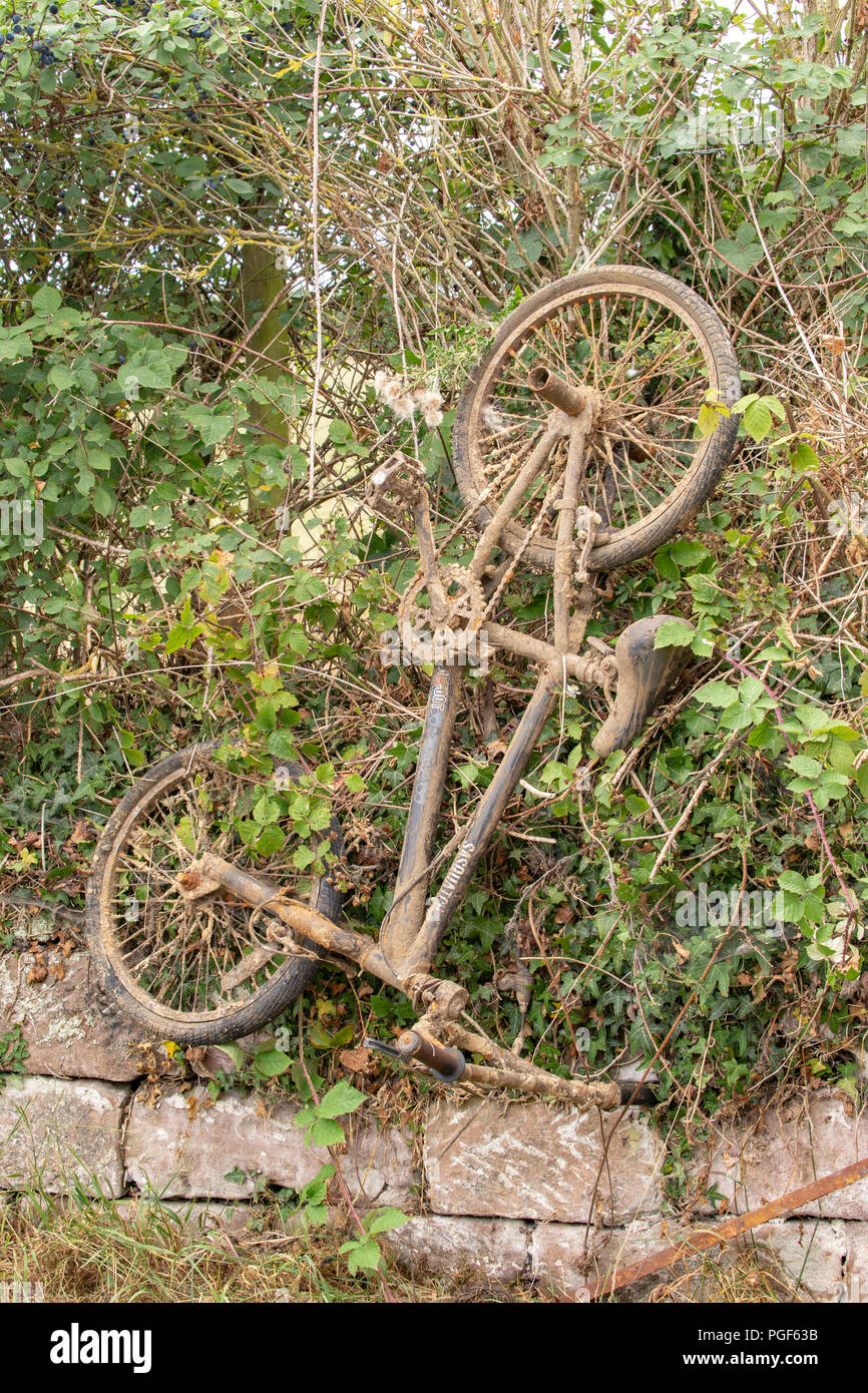 Dumped bicycle removed from canal in Cheshire UK - Stock Image
