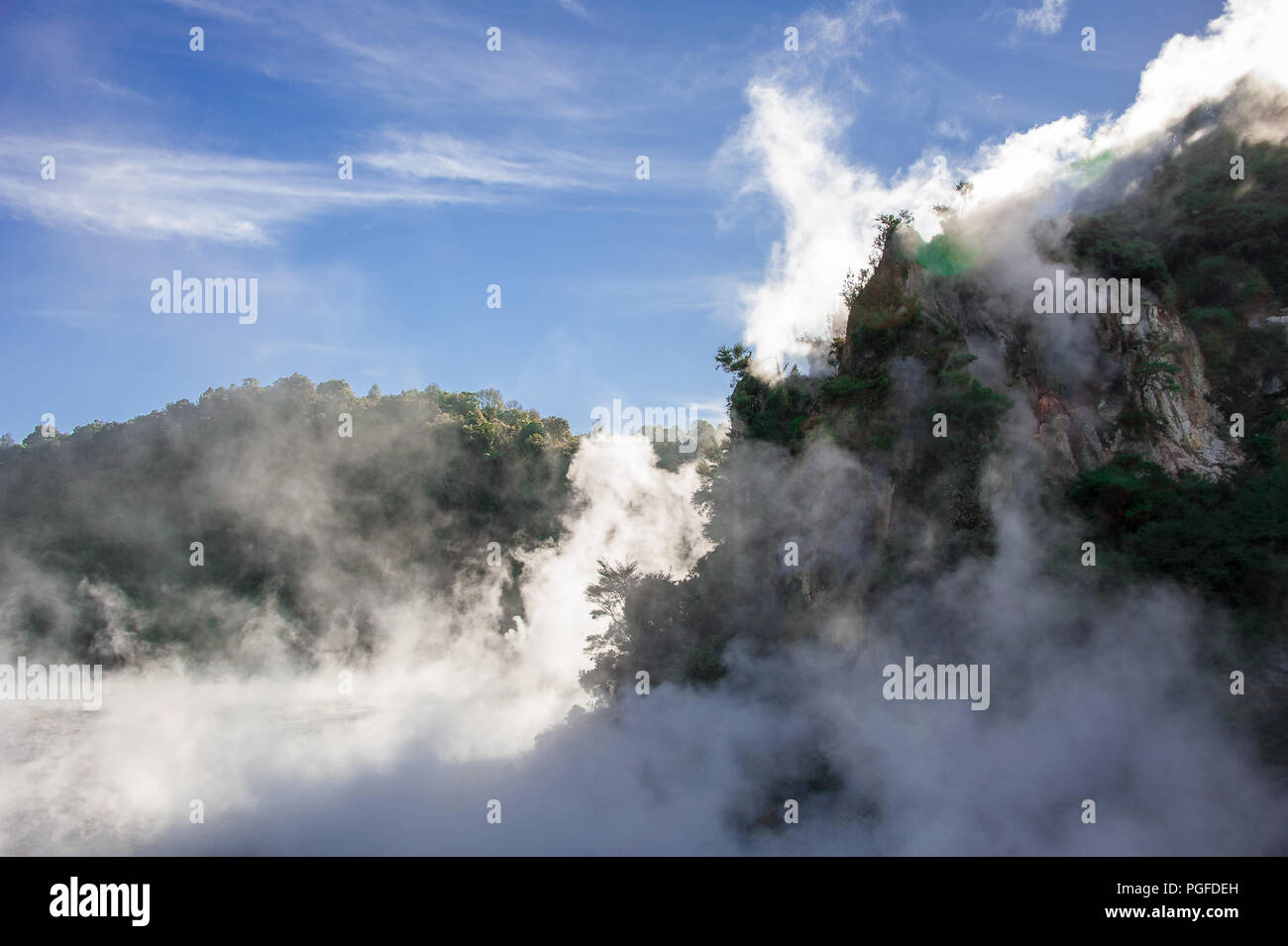 Frying Pan Lake, Waimangu Volcanic Valley, New Zealand. Steam rising from vents in a prehistoric forest landscape. - Stock Image