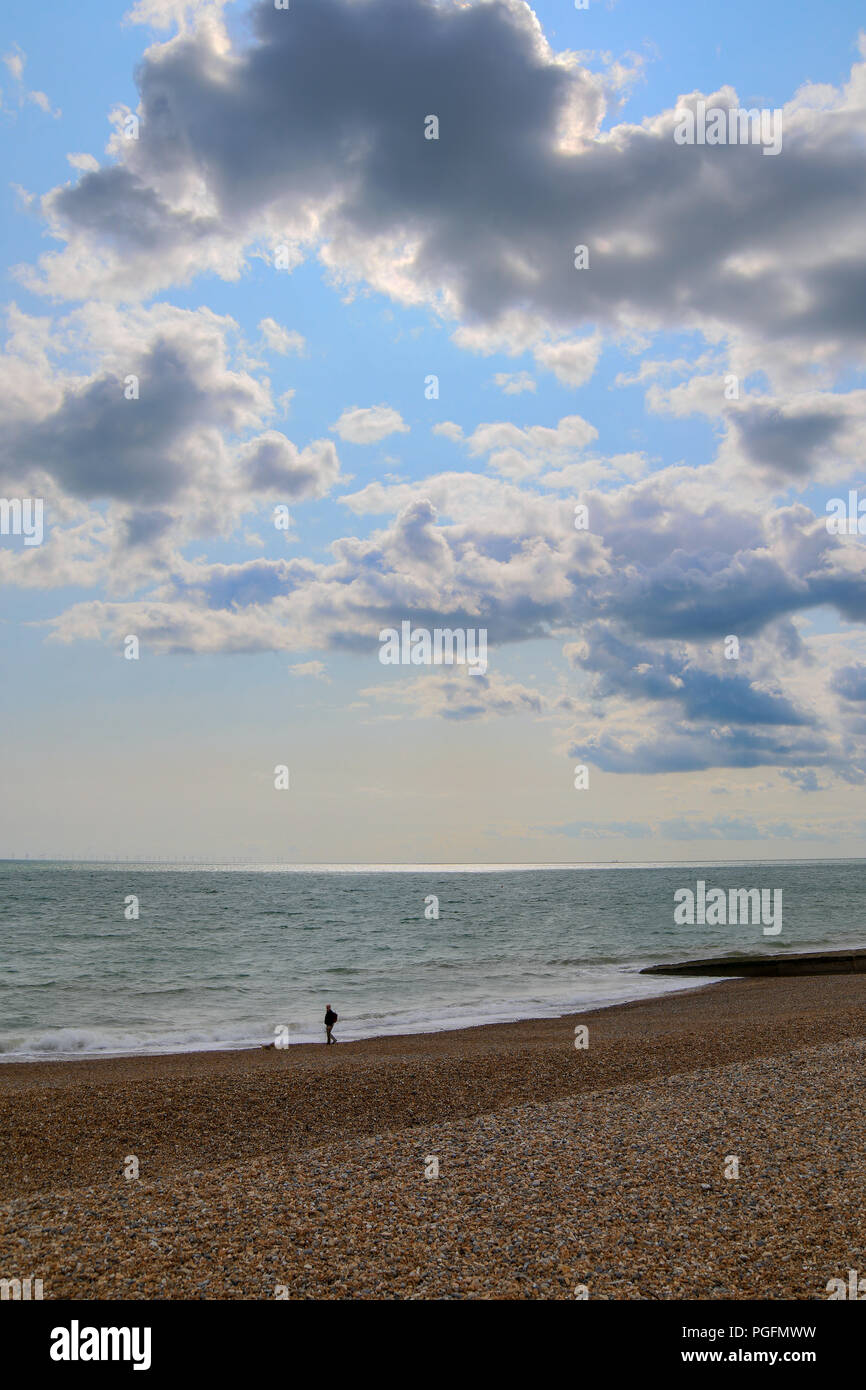 Brighton, UK. 25th Aug, 2018. UK weather: The August bank holiday began with a sunny breezy day but heavy rain is forecast for Bank holiday sunday. Man walking his dog along  pebble beach Brighton Credit: WansfordPhoto/Alamy Live News Credit: WansfordPhoto/Alamy Live News - Stock Image