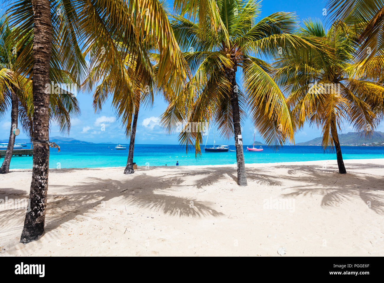 Idyllic tropical beach with white sand, palm trees and turquoise Caribbean sea water on exotic island in St Vincent and the Grenadines - Stock Image