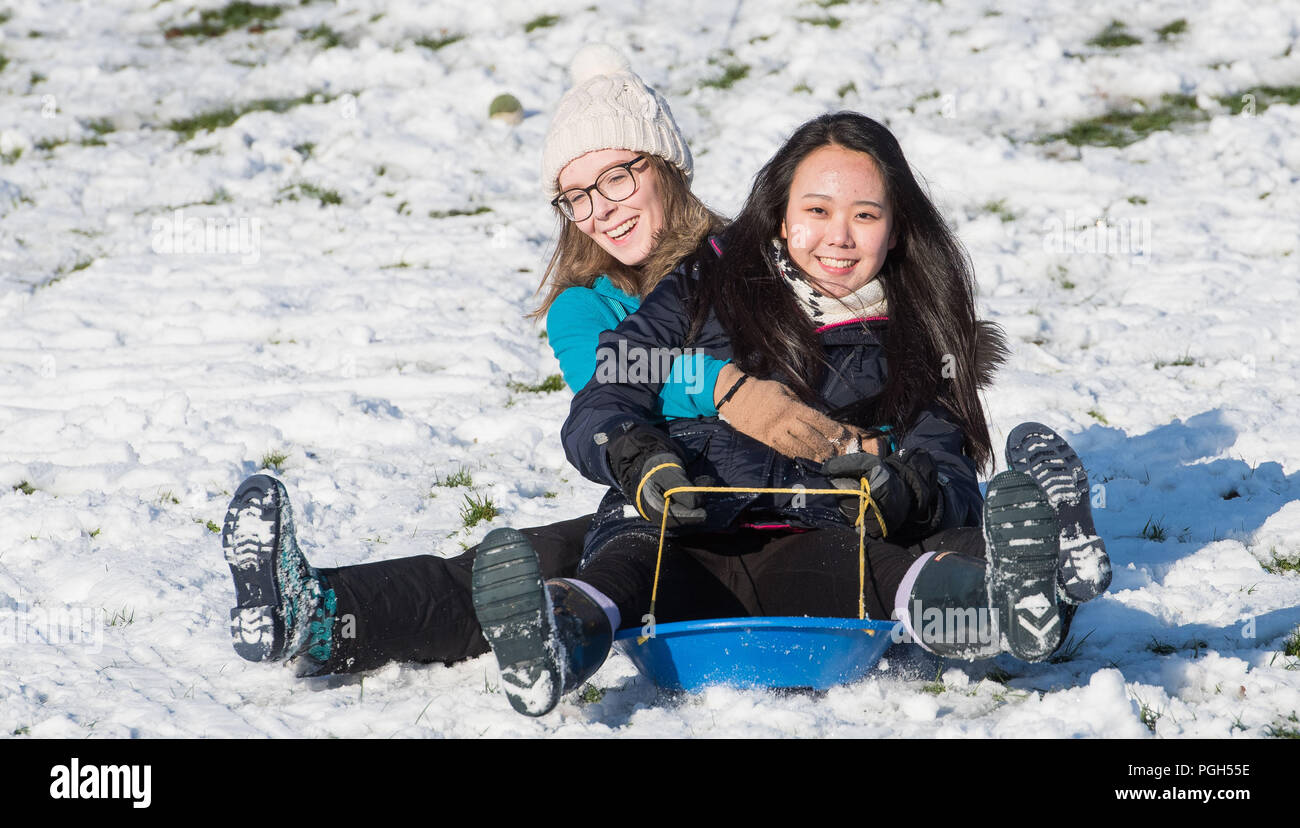 JP PHOTOSALES WWW.IANGEORGESONPHOTOGRAPHY.CO.UK Picture: Ire kim and Katie Russell both 17 Peebles, Sledging in the snow at Haylodge park - Stock Image