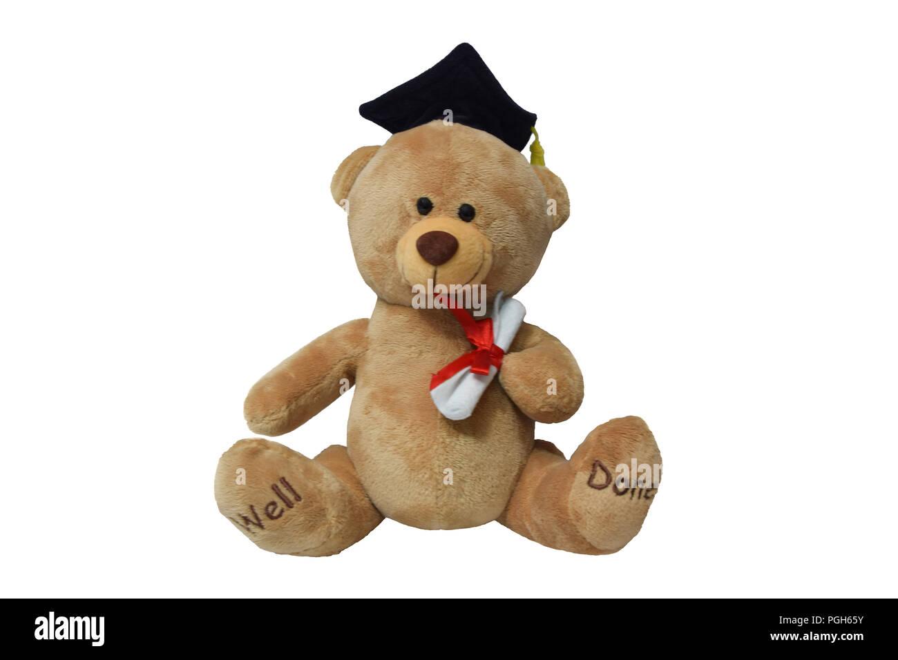 Graduated teddy bear isolated on white - Stock Image