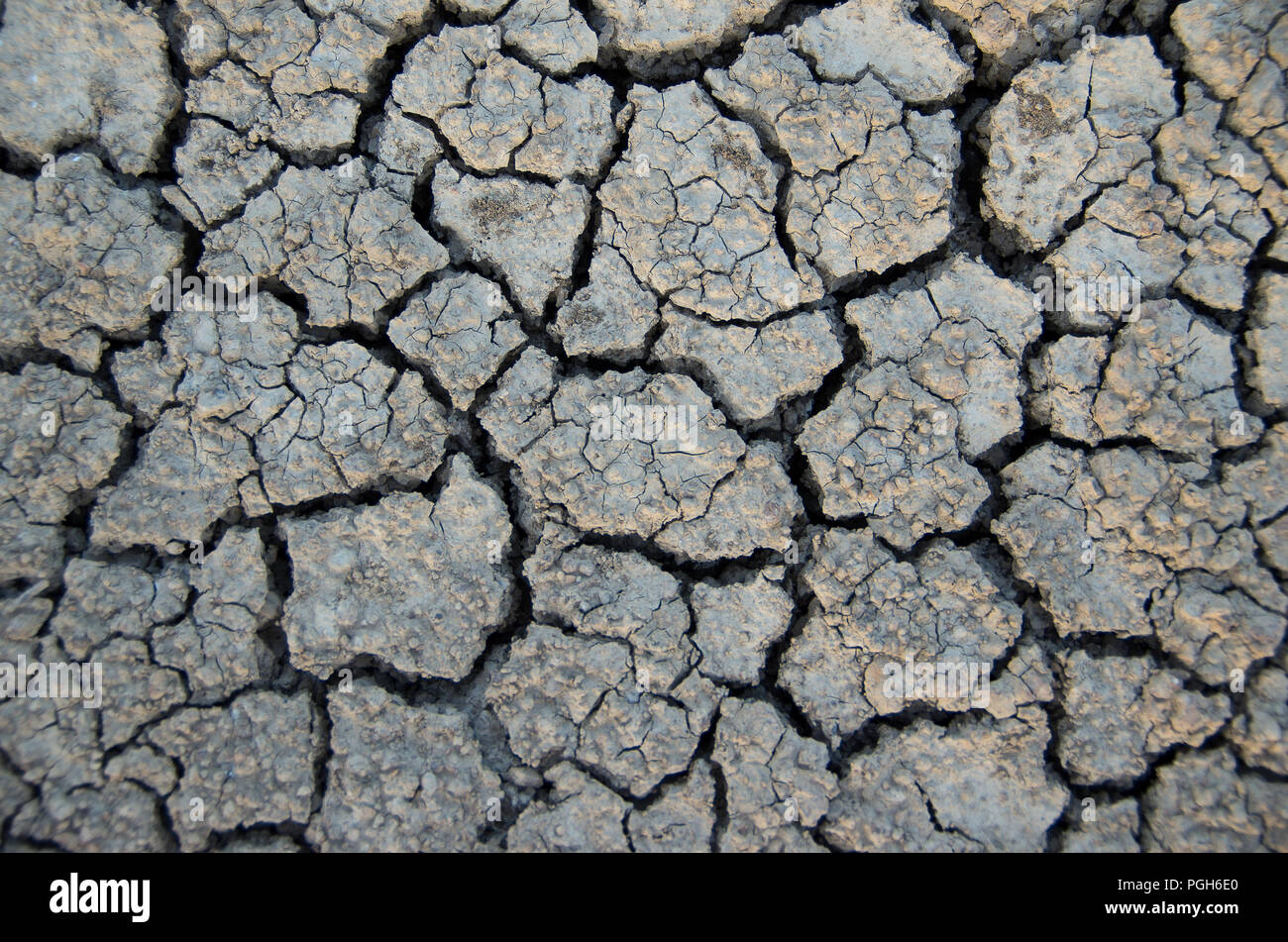 Climatic changes. Dry ground texture due to drought. Global warming. - Stock Image